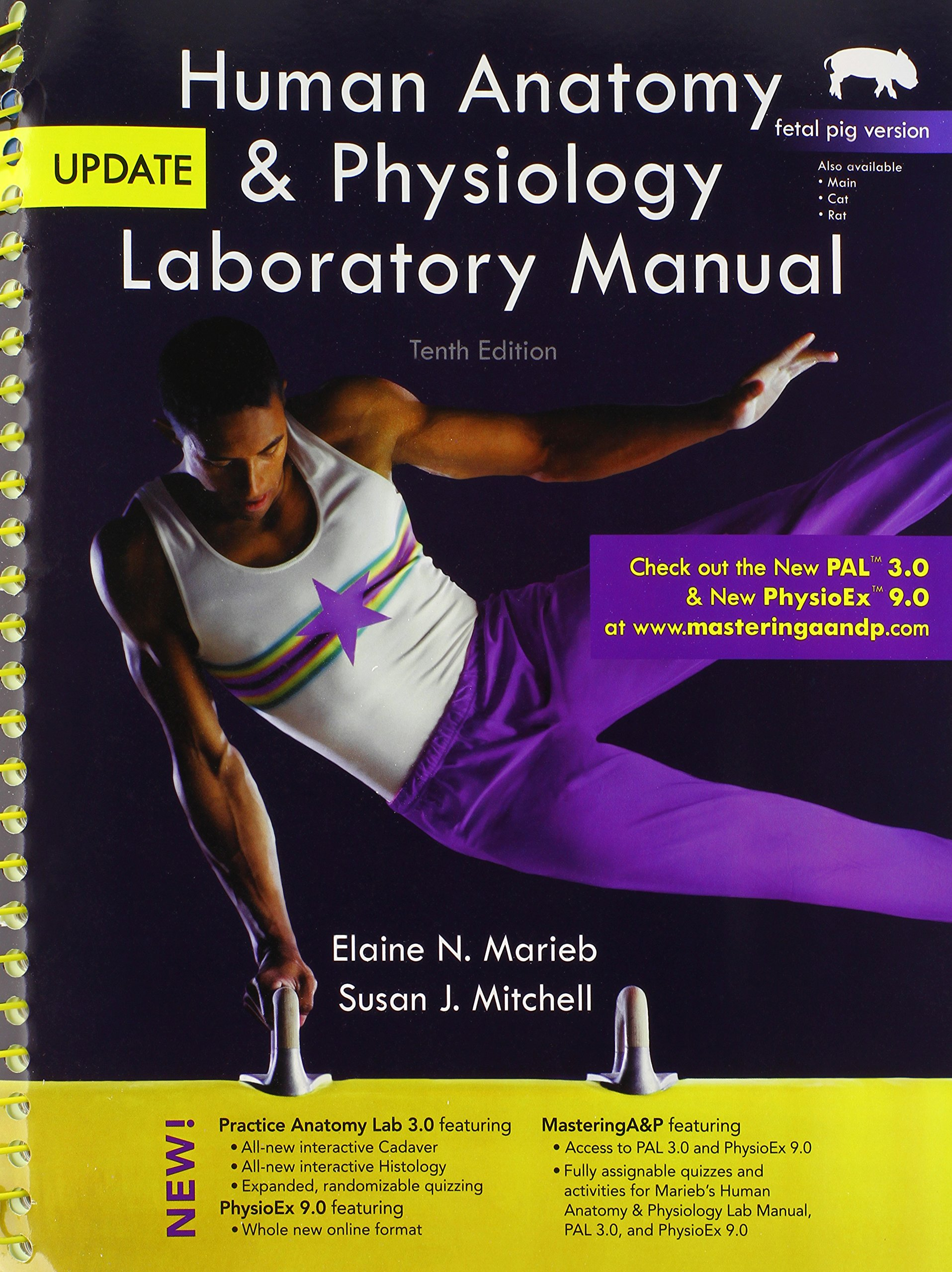 Fantastisch Marieb Anatomy And Physiology Lab Manual Galerie ...