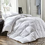 Three Geese QUEEN Size White goose down and Feather Comforter Duvet Insert All Seasons 100% Cotton Shell Down Proof,Hypoallergenic-Box Stitched