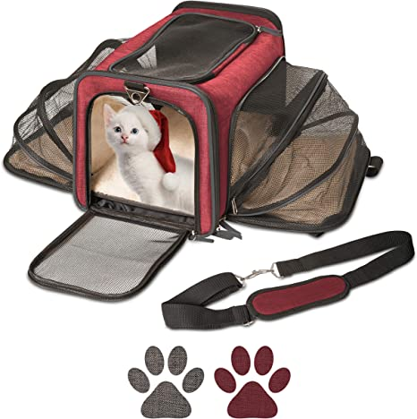 Cat Carrier And Small Dog Carrier By Pet Peppy Expandable Sides Creates Twice The Space For Pets Perfect Cat Travel Bag Dog Travel Bag Airline Approved Pet Carrier Amazon Ca