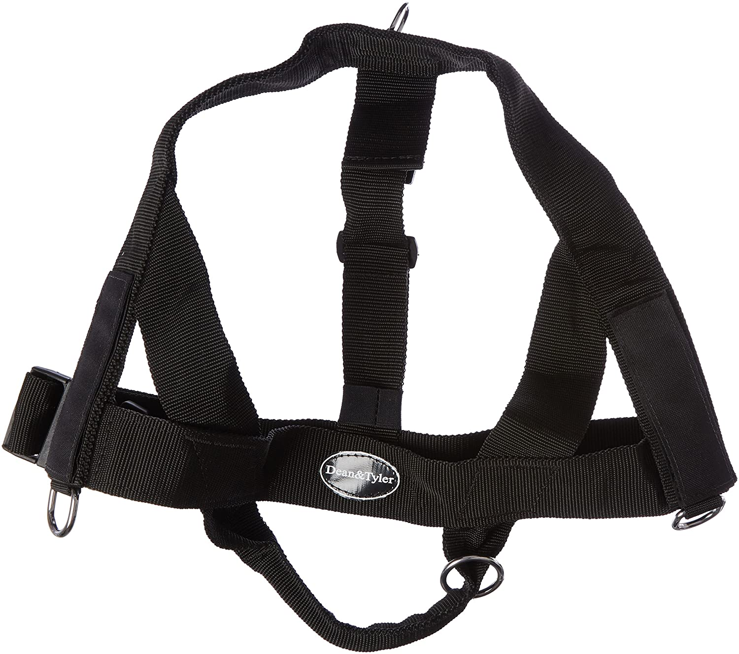 Dean & Tyler D&T Universal DADDYSG BK-XL DT Universal Fun No Pull Dog Harness, Daddy's Girl, X-Large, Fits Girth, 91cm to 119cm, Black