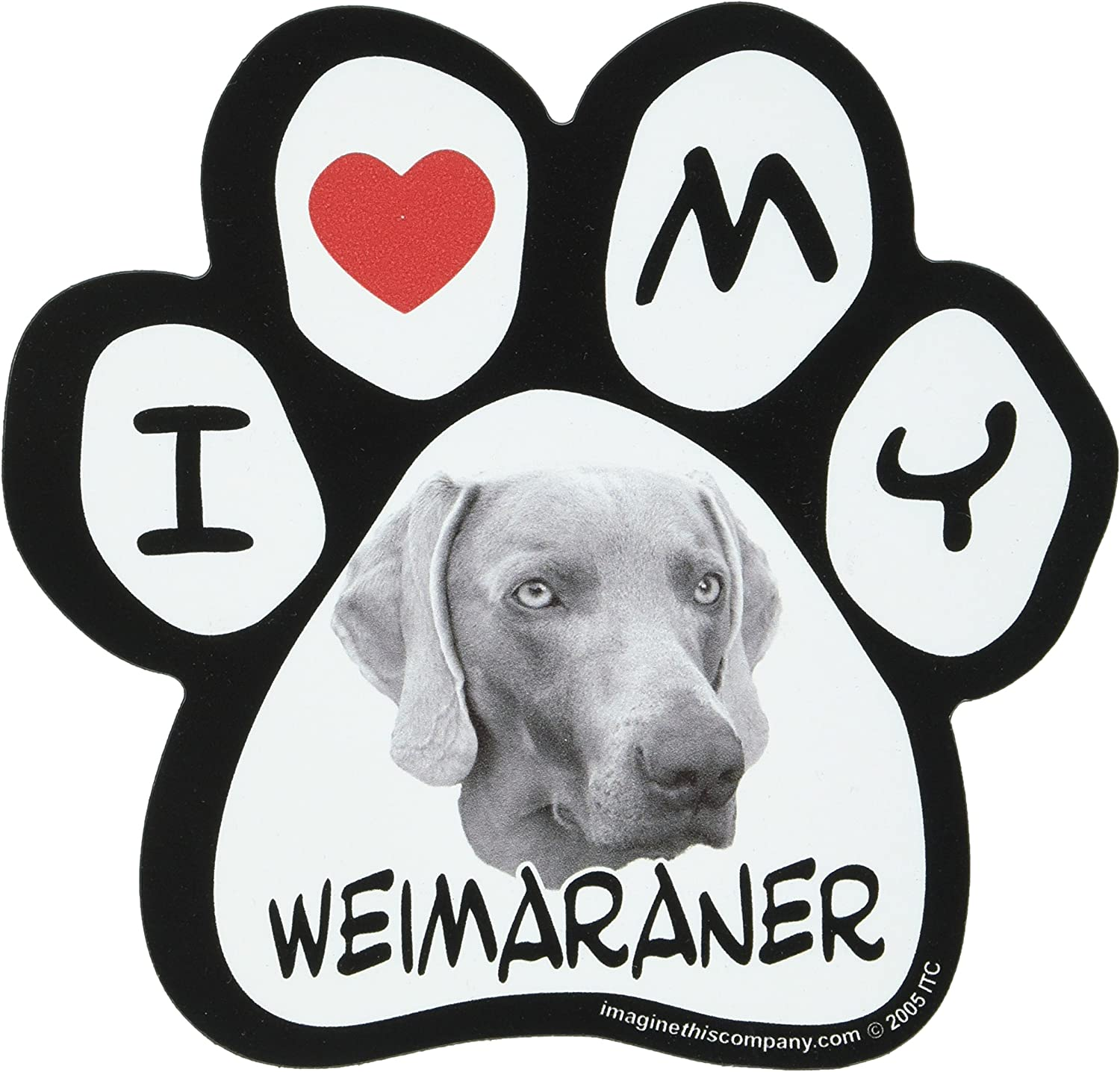 Imagine This 5-1//2-Inch by 5-1//2-Inch Car Magnet Picture Paw Weimaraner
