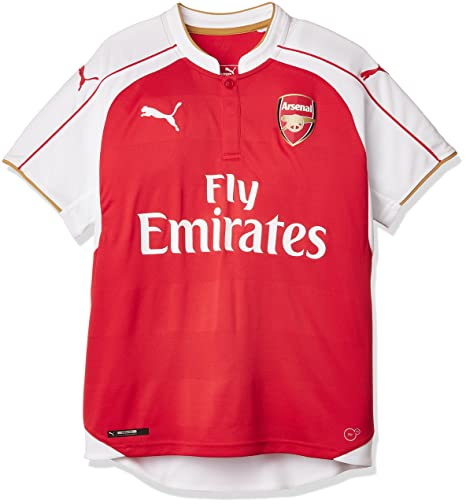 more photos cebc4 6ab05 PUMA Men's Fc Replica Home Shirt