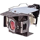 Alda PQ Premium, Lampe de projecteur / de rechange 5J.J7L05.001 compatible avec BENQ W1070, W1080ST, W1080ST+ projecteurs, Alda PQ Lampe avec logements / monter