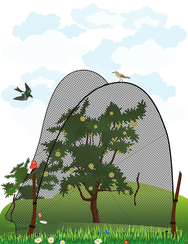 Redes para Protectora Jardines Proteger de Semillero//Verduras//Frutas Suaves Plantas WARKHOME Malla Anti P/ájaro 94cmx 5M