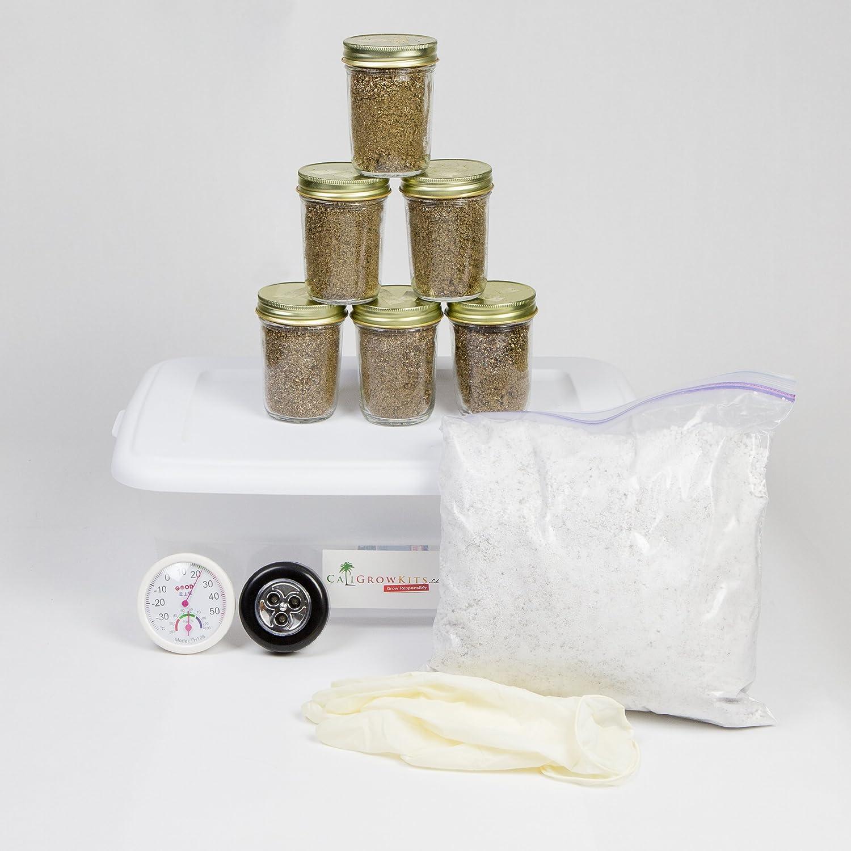 Simple Mushroom Kit + 6 Premium Grow Jars: Amazon co uk