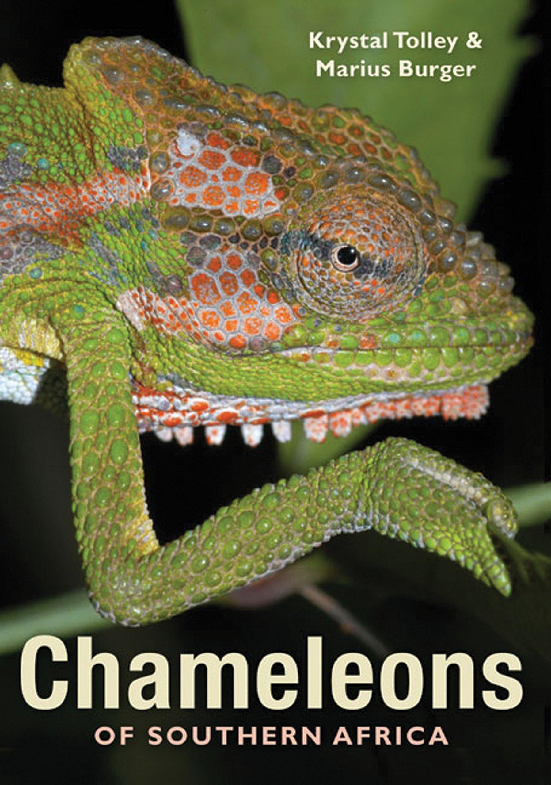 Download Chameleons of Southern Africa PDF