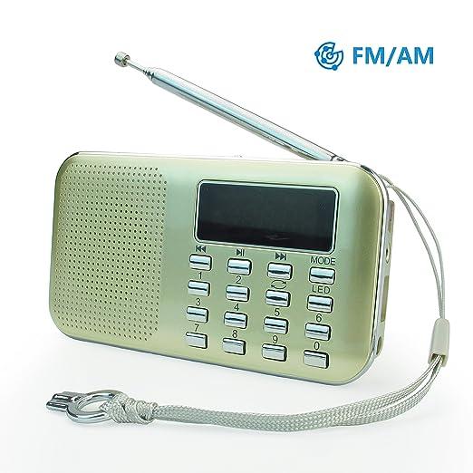 49 opinioni per PRUNUS Mini radio AM/FM ad altoparlante singolo. Lettore musicale MP3, Supporto