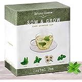 Grow 4 Herbal Tea Plants From Seed - Indoor Herb Garden Growing Kit W/ Organic Mint Seeds, Catnip Seeds, Lemon Balm & Chamomile. Complete Starter Set W/ Soil, Pots, Labels & Guide. Gardening Gift Set