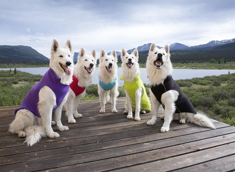Dog Coat RC Pet Products Baseline Dog Fleece Black//Lime Size 24