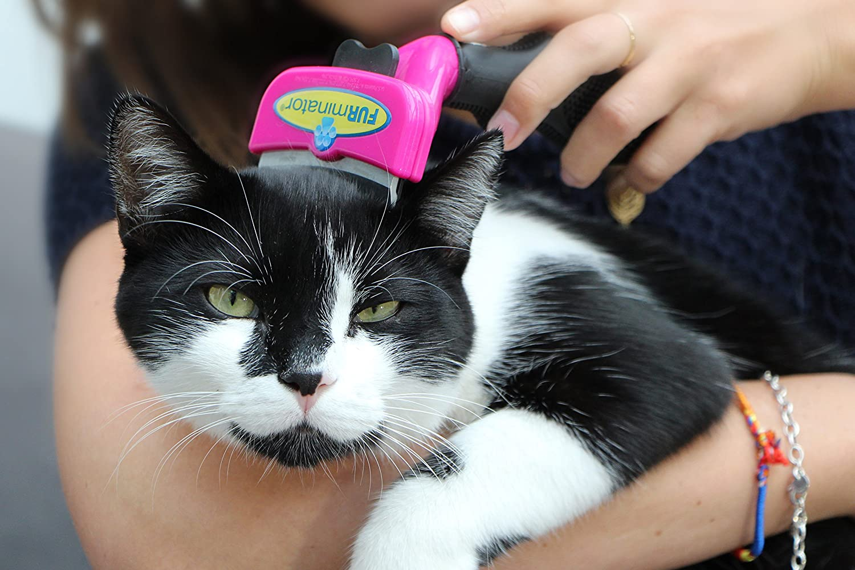 Furminator FURflex Large Cat Contour Combo L: Amazon.es: Productos para mascotas