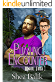 Puzzling Encounters (Mystic Pines Book 3)