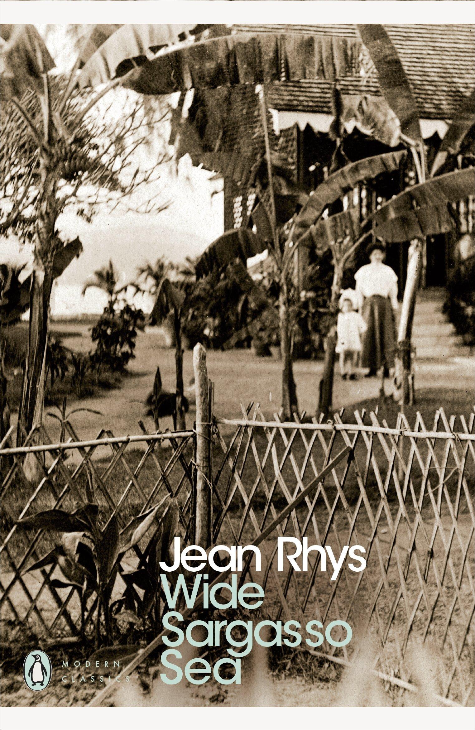 Wide Sargasso Sea (Penguin Modern Classics): Amazon.co.uk: Rhys, Jean:  9780141182858: Books