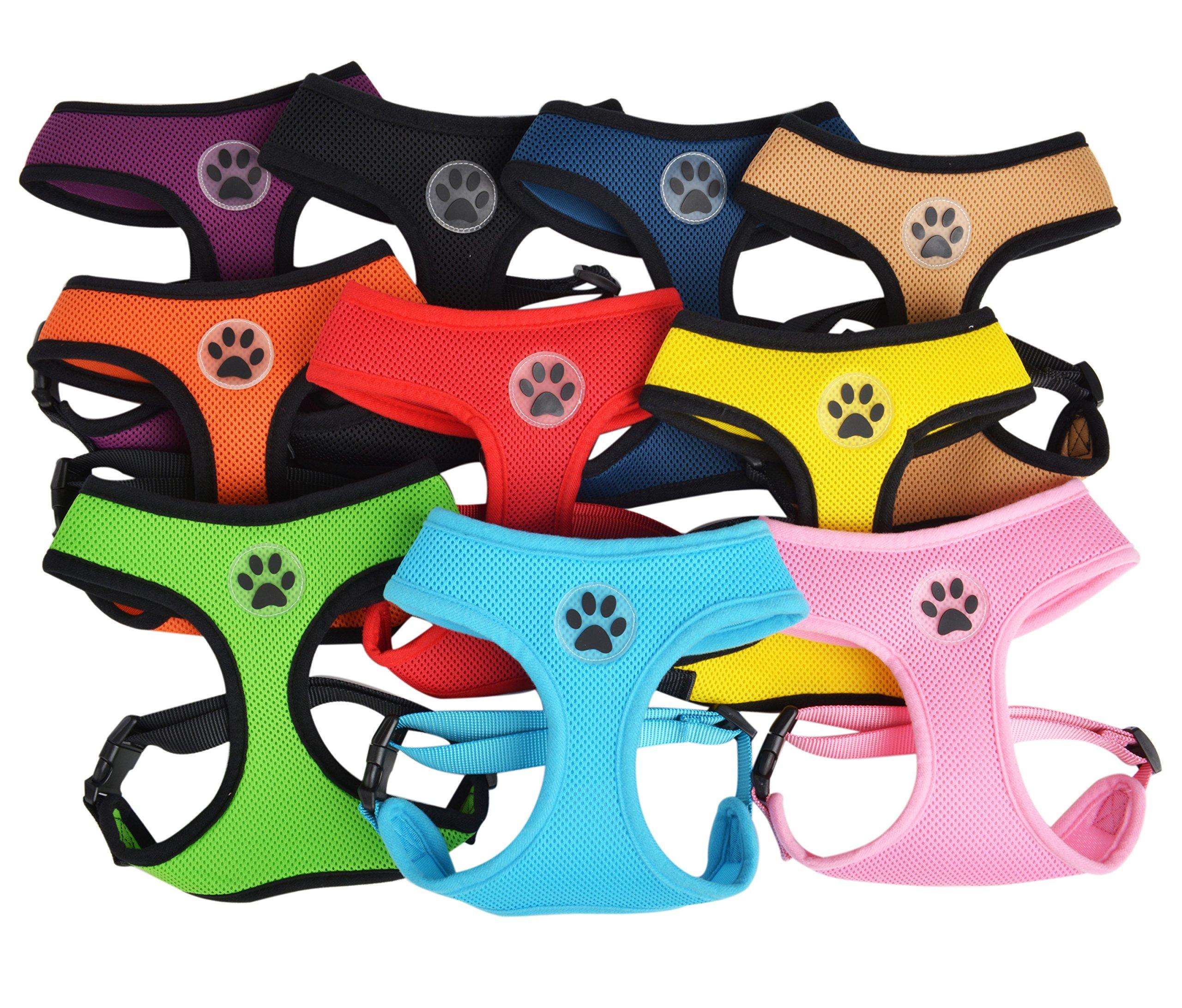 BINGPET BB5001 Soft Mesh Dog Harness Pet Walking Vest Puppy Padded Harnesses Adjustable, Blue Large by BINGPET (Image #5)