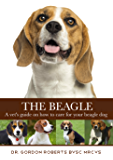 The Beagle: A vet's guide on how to care for your beagle dog