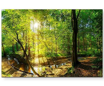 Bild auf Leinwand als Kunstdruck 40 x 40 cm Wald Sonnenuntergang Wanddekoration