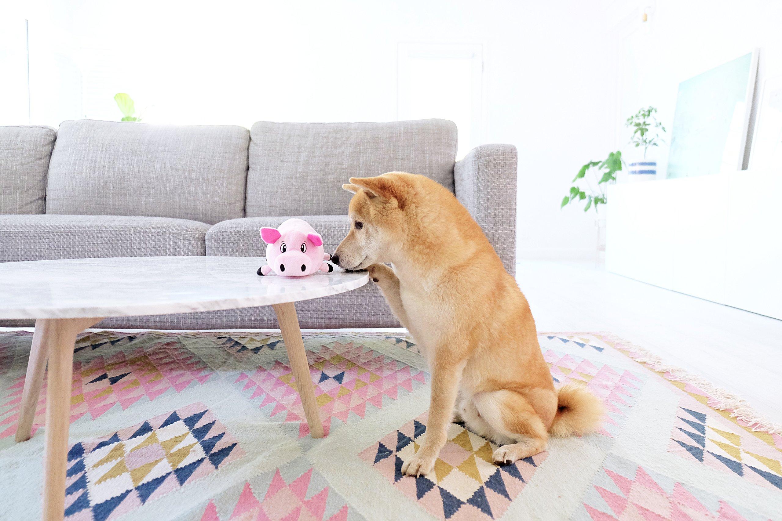 Fattiez-Round-Squeaky-Plush-Dog-Toy-by-Outward-Hound-Small-Pig