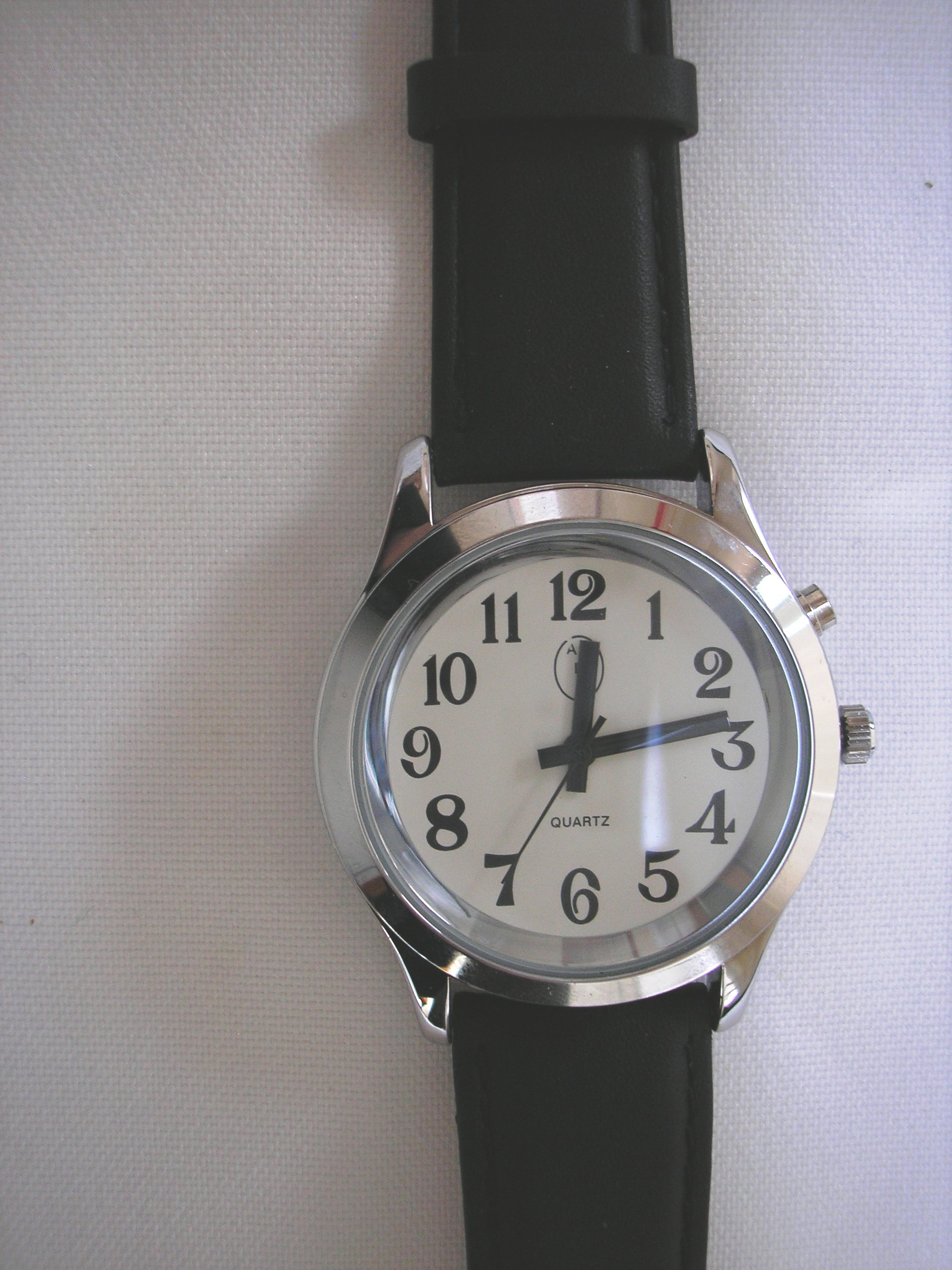 Ladies Deluxe Talking Wrist Watch Silver Tone for the Blind and Low Vision