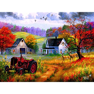 Heartland Home 1000 pc Jigsaw Puzzle by SUNSOUT INC: Toys & Games