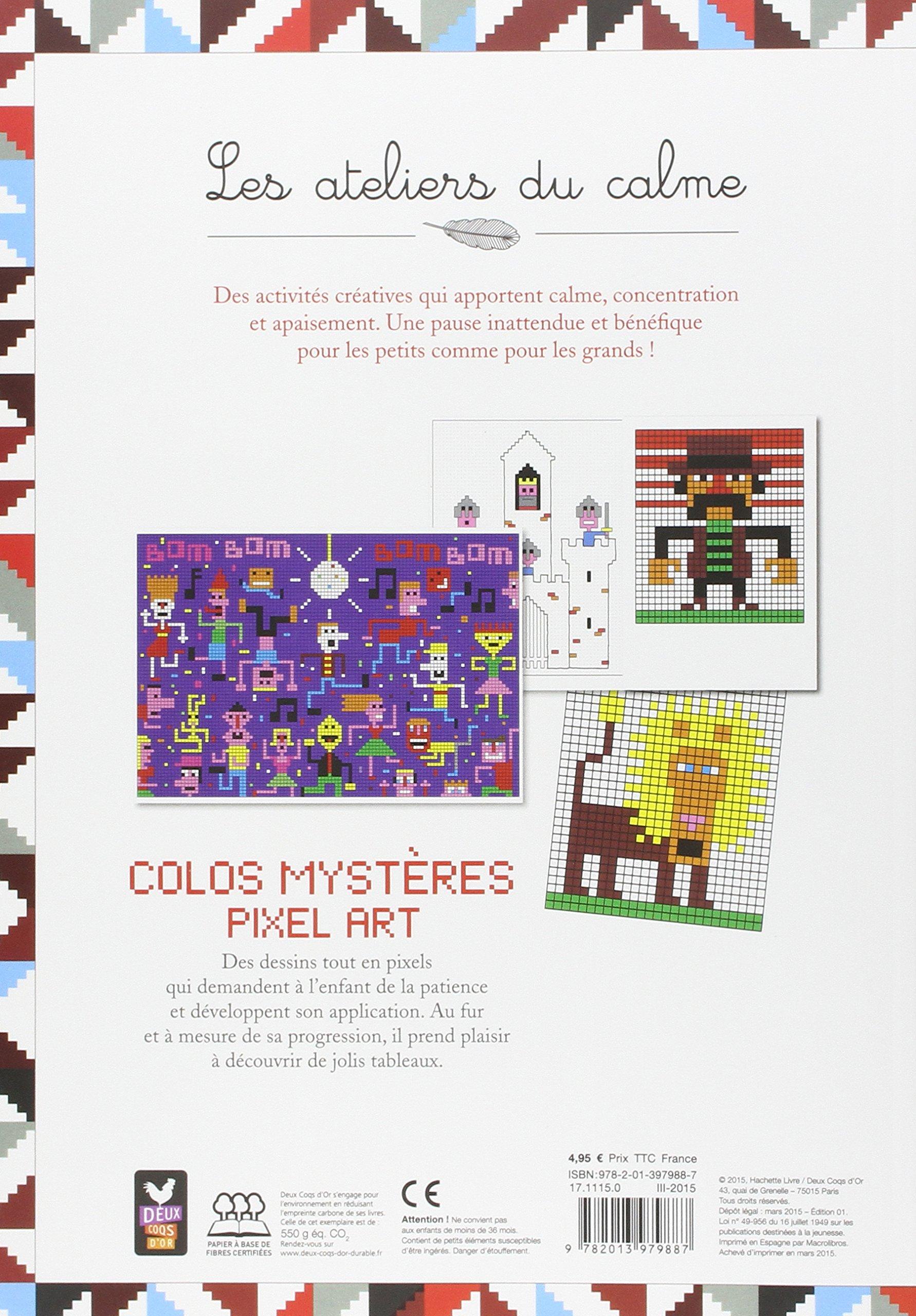 Colos Mystères Pixel Art Amazonfr Aurélie Desfour De Vos