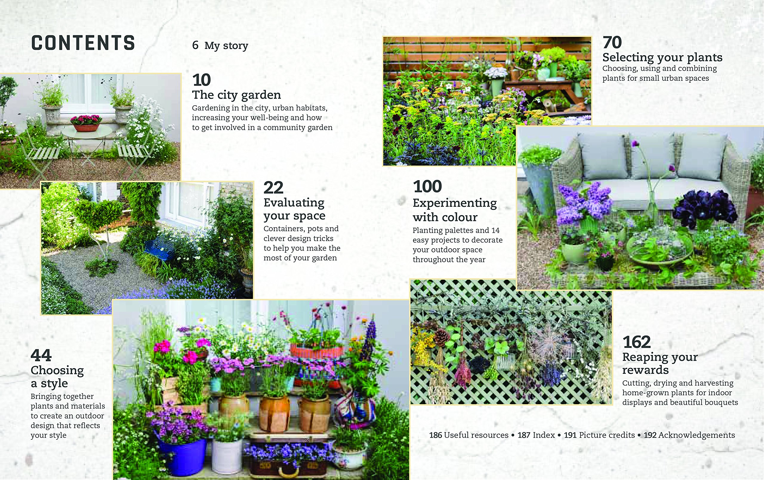 Top 30 stunning low budget diy garden pots and containers 187 home - Urban Flowers Creating Abundance In A Small City Garden Amazon Co Uk Carolyn Dunster 9780711238626 Books