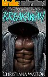 Breakaway: A Hockey Romance