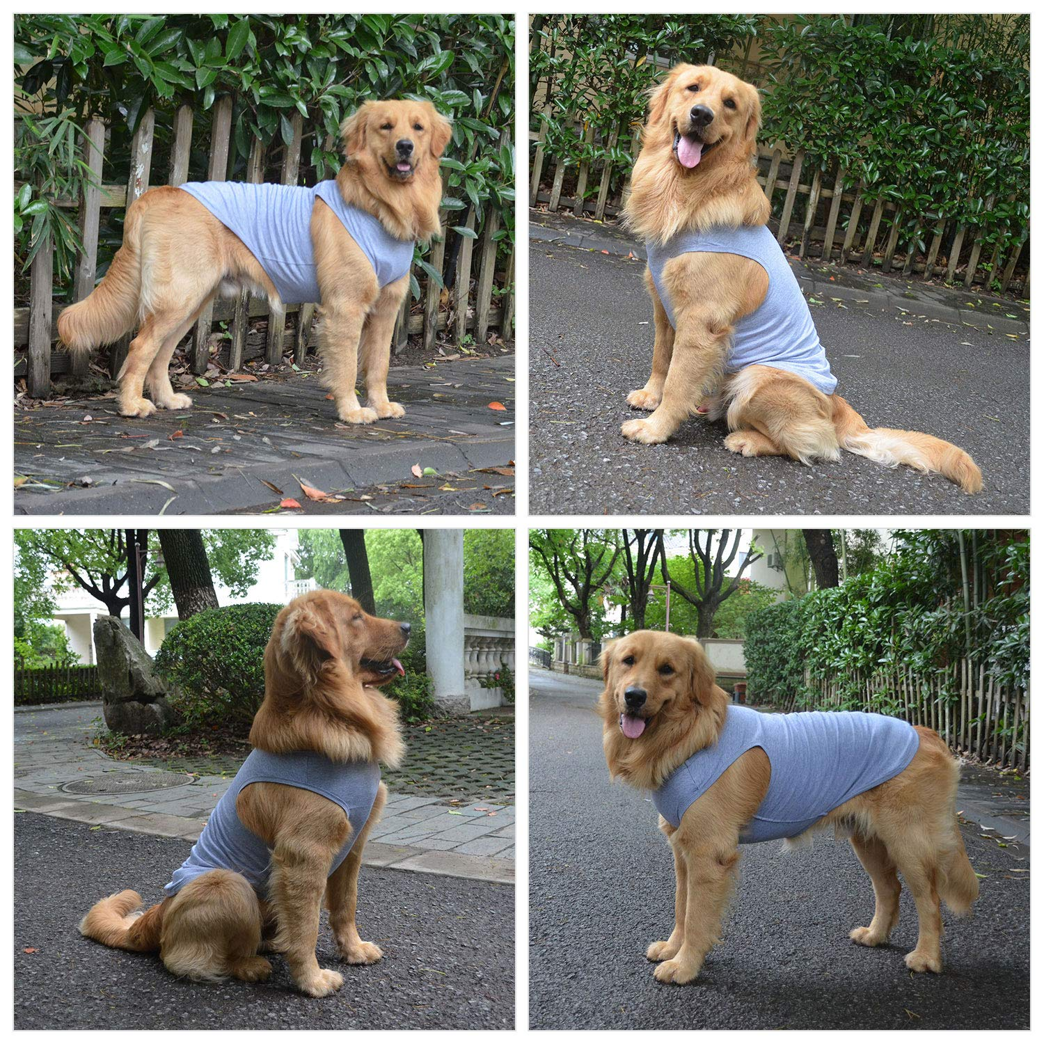 lovelonglong 2019 Pet Clothing Costumes Puppy Dog Clothes Blank T-Shirt Tee Shirts for Large Medium Small Dogs 100/% Cotton Classic Pet Clothing Puppies Doggy Vest Gray XXXXL