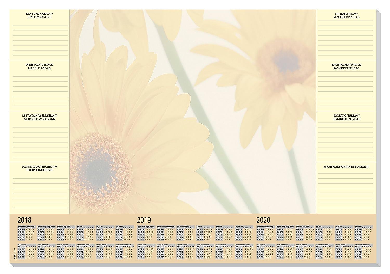 Sigel HO380 Sottomano da scrivania di carta, con calendario 3 anni, Finesse, 59,5x41 cm, 30 fg.