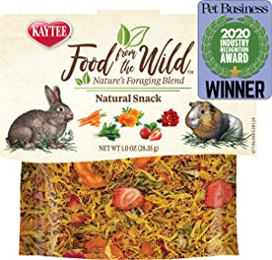 Kaytee Food from The Wild Natural Snack, 1 Ounce