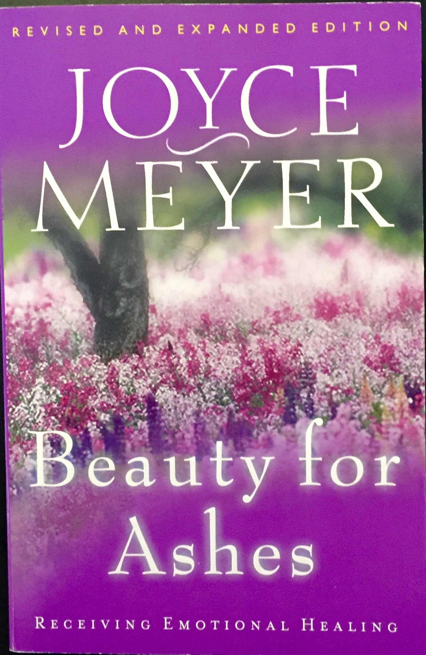 Read Online Beauty for Ashes pdf epub