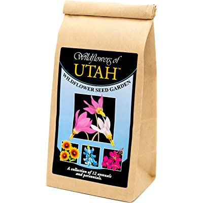 Utah Wildflower Seed Mix - A Beautiful Collection of Twelve annuals and perennials - Enjoy The Natural Beauty of Flowers in Your own Home Garden : Garden & Outdoor
