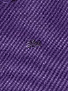 Classic Knit Rib Polo 112-12-1021: Purple
