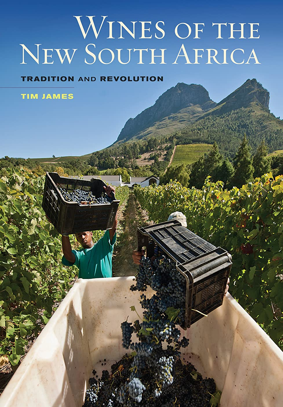 Wines of the New South Africa: Tradition and Revolution (English Edition)