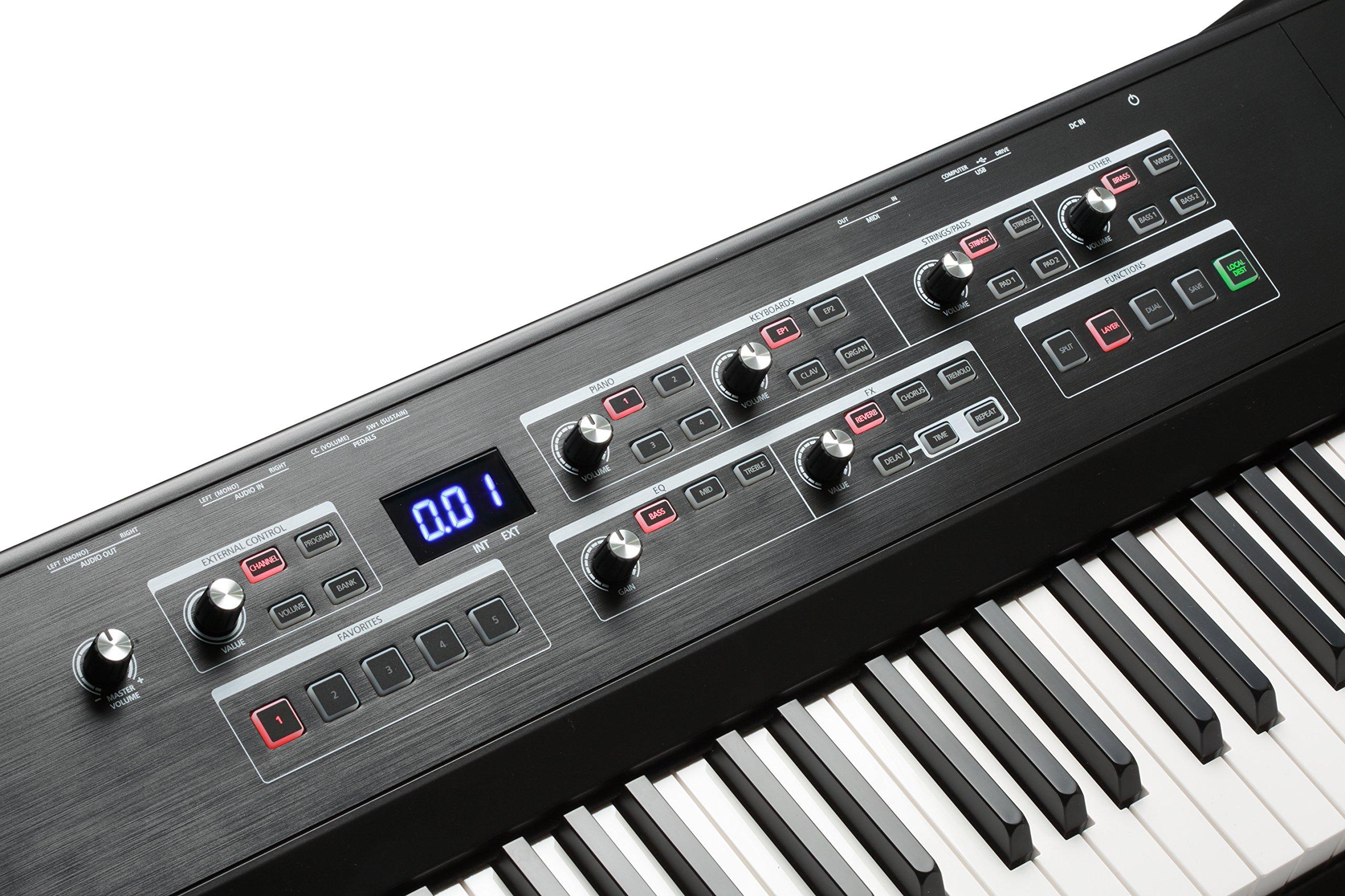 Kurzweil SP1 88-Key Stage Piano, Black (SP1-LB) by Kurzweil (Image #16)