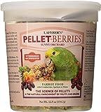 Lafeber's Pellet-Berries Sunny Orchard Parrot Food 12.5 oz
