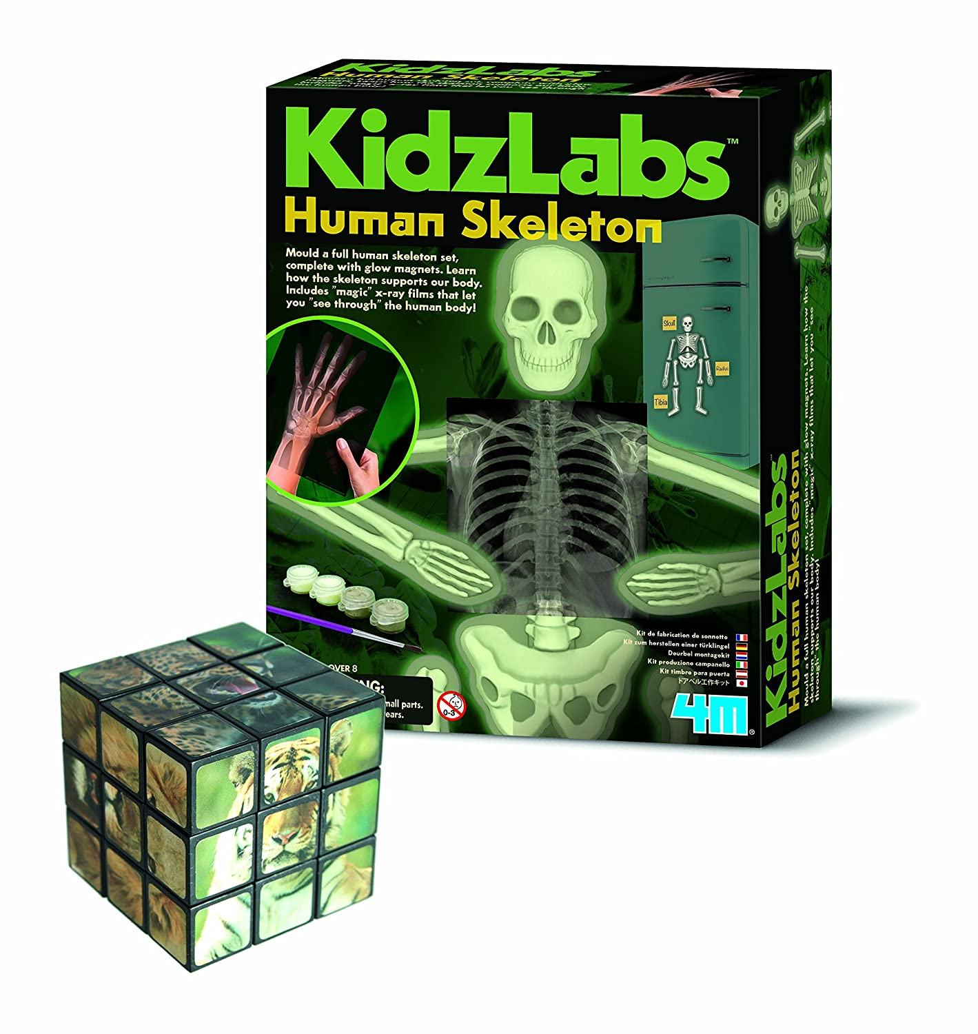 First Port of Call for Gifts Teach Myself Biology Skeleton - Comes with a Fun Wild Animal Magic Cube Inspirational Gifts