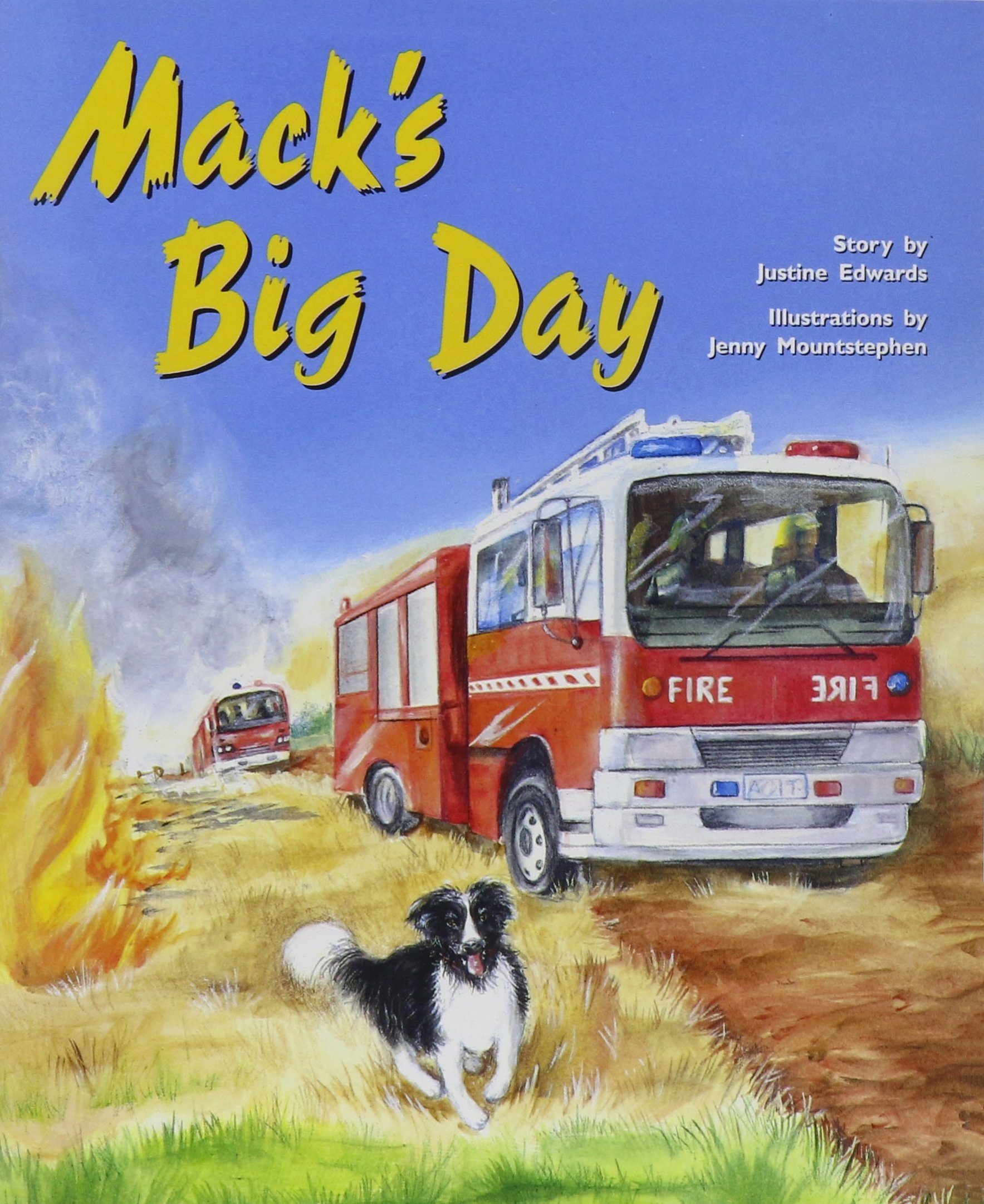 Rigby PM Plus: Individual Student Edition Purple (19-20) Mack's Big Day pdf
