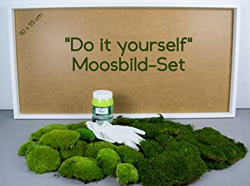 DIY Moosbild 100% Flachmoos, Moosbild Selber Machen, Wandbild Selber  Kleben, Do It