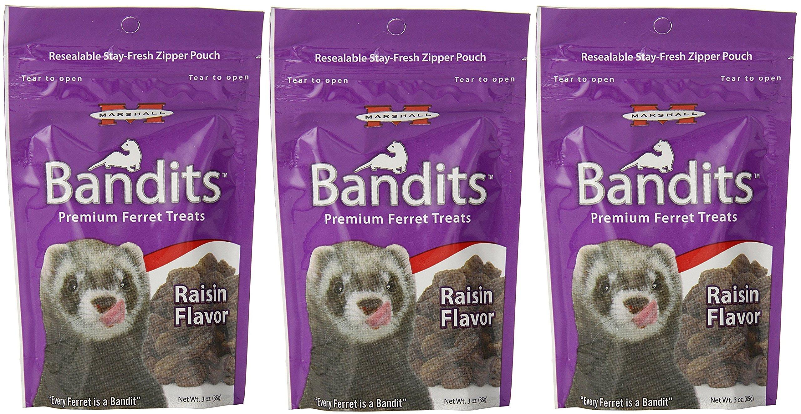 (3 Pack) Marshall Bandits Ferret Treat, 3-Ounce, Raisin