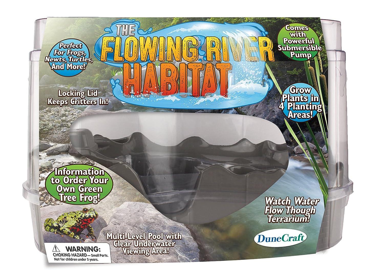 amazon com dunecraft flowing river habitat domed terrarium toys
