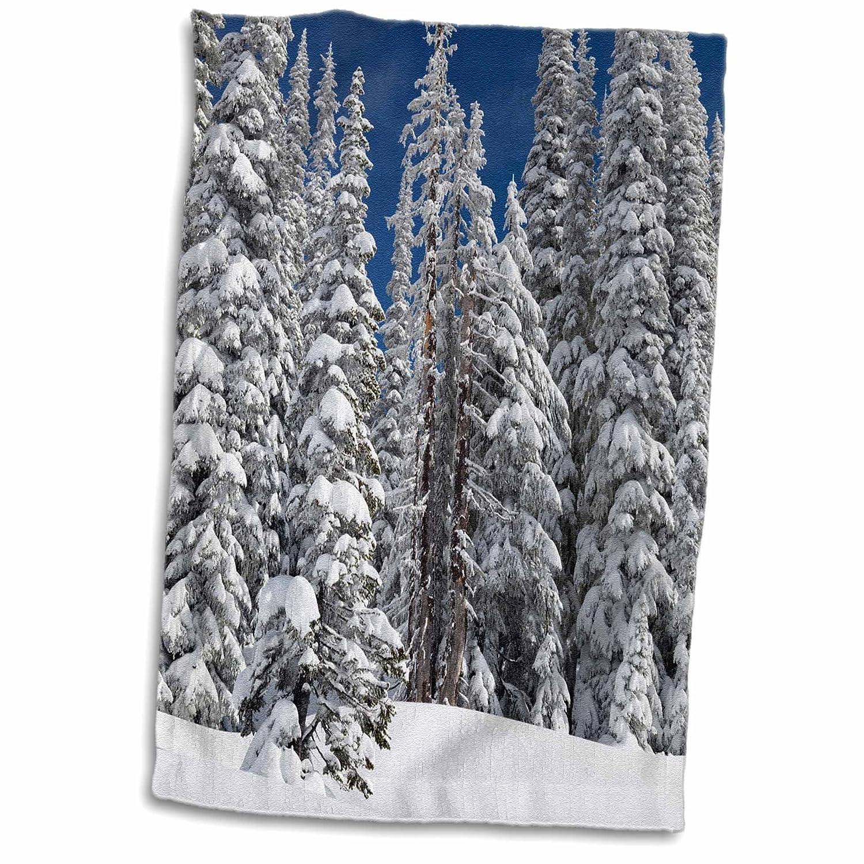 3D Rose Wa-Mt Rainier Np-Fir Trees-Winter-Us48 Jwi3834-Jamie and Judy Wild Hand//Sports Towel 15 x 22