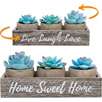 3 Artificial Succulent Plants with Pots with Rustic Planter Box – Home Sweet Home & Live Laugh Love Realistic Greenery…