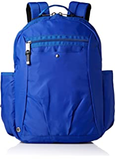 5fa526e981e3 Amazon.com  Baggallini Skedaddle Laptop Backpack