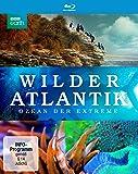 Wilder Atlantik - Ozean der Extreme [Blu-ray]