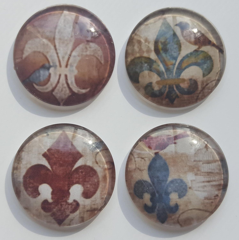 French FLEUR DE Lis Bird Glass Magnet set of 4