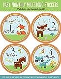 Baby Monthly Milestone Stickers: Woodland Friends (12 stickers)