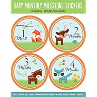 Baby's Monthly Milestone Stickers - Woodland Friends: 12 Stickers: One for Each Month!