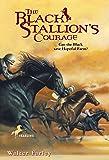 Black Stallion's Courage
