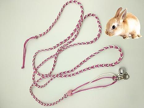 Correa de ratón, arnés de cuerda, para entrenamiento de hámster ...
