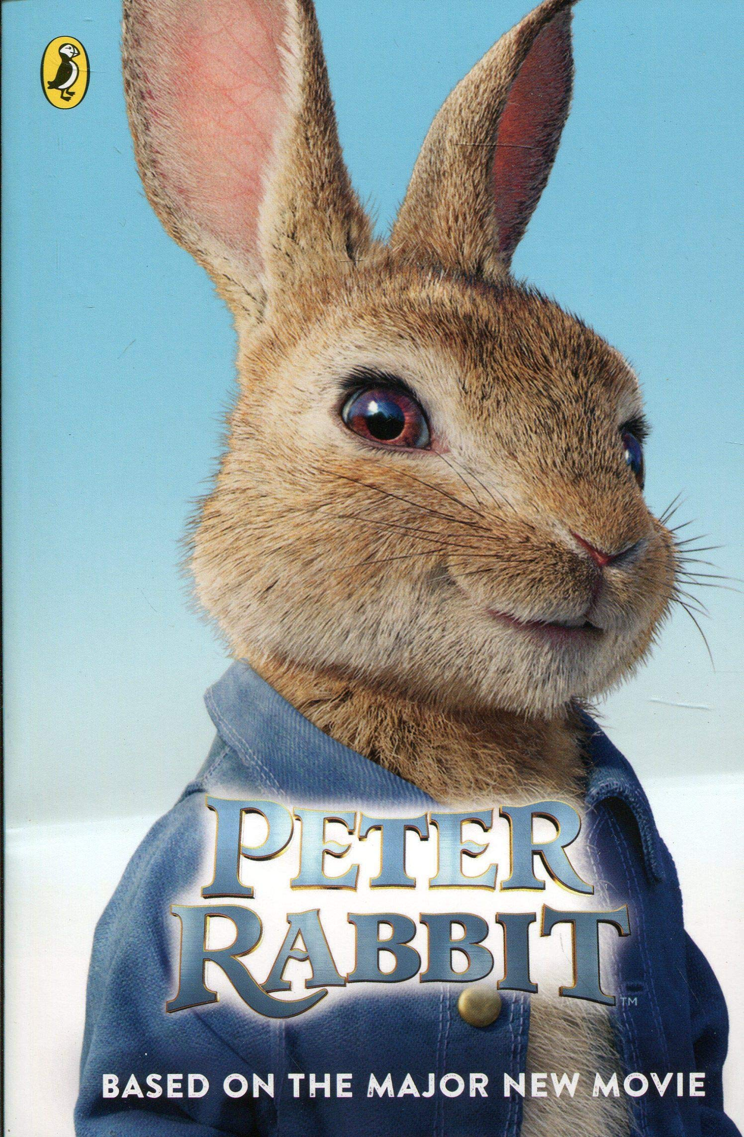 Peter Rabbit Poster 2018 Kids NEW Movie Beatrix Potter FREE P+P CHOOSE YOUR SIZE