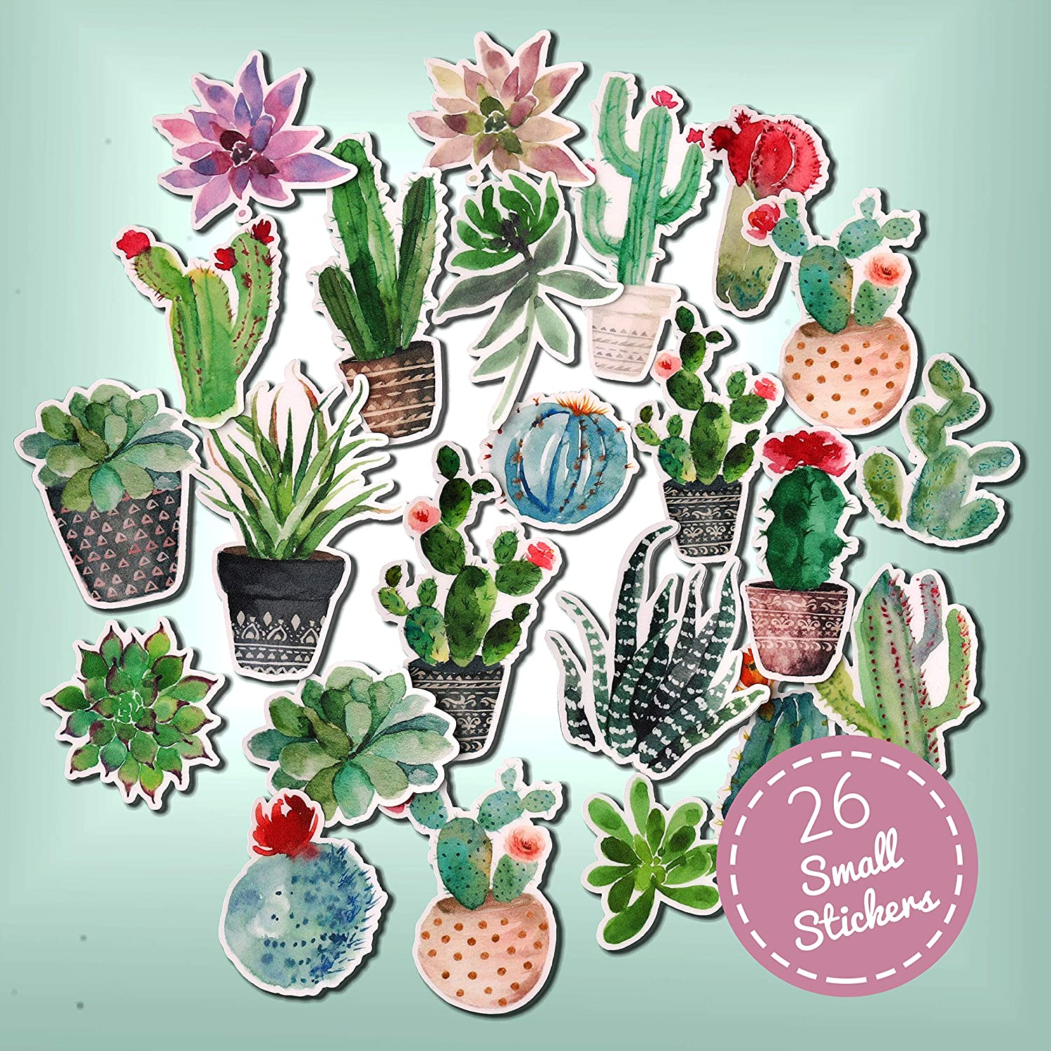 Cactus Succulent Plant Stickers Journal and Planner Stickers
